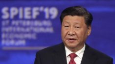 """시진핑 """"내 친구 트럼프, 미중관계 붕괴 원치 않아"""""""