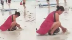 관광객이 파묻은 '똥 기저귀'에 보라카이 해변이 '72시간' 폐쇄됐다