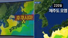 일본이 바다에 '방사능 오염수' 버리면 단 220일 만에 제주도가 끝장난다