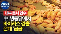 [내부 문서 입수] 中 냉동닭 바이러스 검출 은폐 사실 드러나