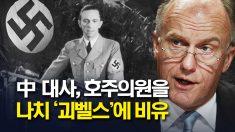 """中 외교관 호주 의원에 '나치 괴벨스'…  """"극도로 역설적"""""""