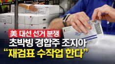 """美 대선 선거 분쟁, 초박빙 경합주 조지아 """"재검표 수작업한다"""""""