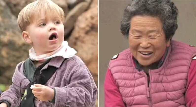 미국에서 온 어린 4형제가 한국 시골 할매 집에서 엄마아빠 없이 지내게 됐을 때 반응