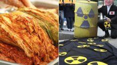 김치에서 추출한 미생물로 방사능 물질 제거하는 기술이 개발됐다