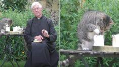 코로나 때문에 비대면 설교하던 신부님 우유 홀짝홀짝 훔쳐먹는 고양이