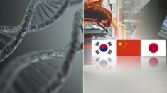 """중국 법의학자 """"한국인, 일본인, 중국 한족 '조상' 같다"""""""