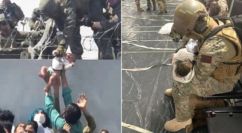 외국 군인들에게 아기 던지는 아프간 엄마아빠들, 아무것도 모른 채 부모와 생이별한 아기들