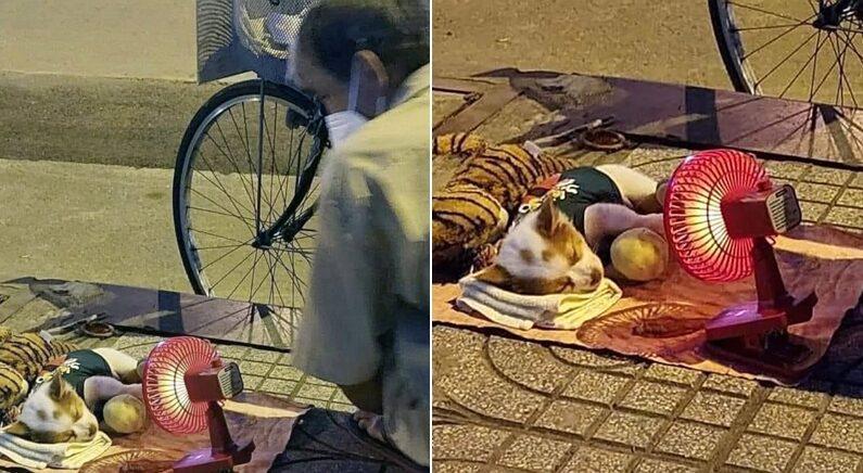 밤공기 쌀쌀해지자 매일 길거리 나오는 노점상 할아버지가 돈을 모아서 산 온풍기