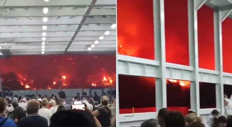 """""""지옥 그 자체"""" 밖이 다 빨간 산불에서 간신히 대피한 주민 수천명 (영상)"""