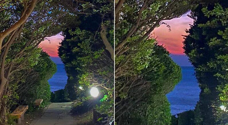 오직 자연의 힘으로만+노을 질 때만 볼 수 있는 '태극 한반도' 사진이 공개됐다