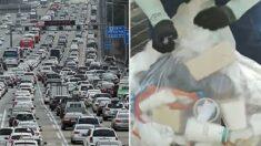 추석 연휴 기간 고속도로 휴게소에 '쓰레기 200톤' 버려졌다